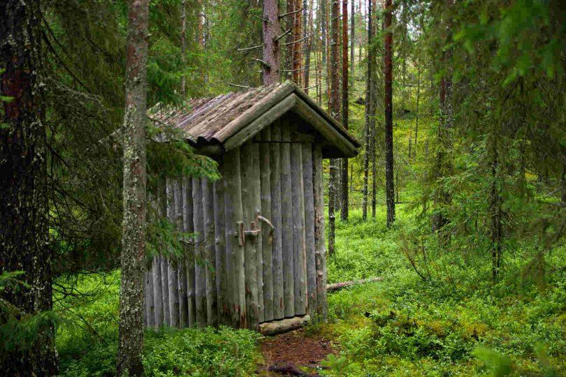 Poljski wc, slika: https://pixabay.com